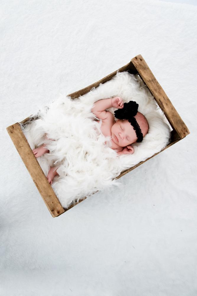 petit bébé dans une valise (3)