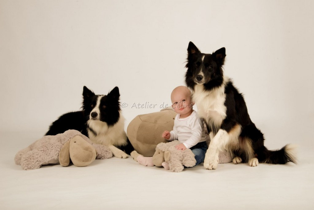 Séance bébé, chien, chat, studio (5)