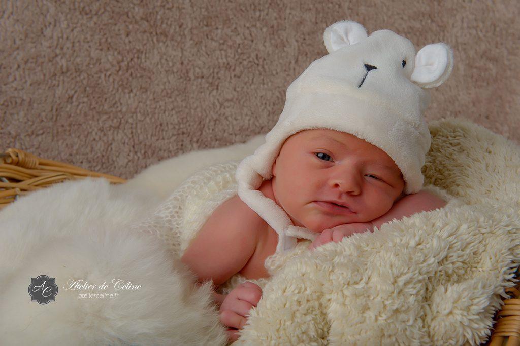 Séance New Born, bébé, chiens, studio, famille, naissance (1)